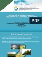 biomasa-misiones.pdf