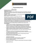 programming intern