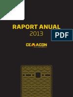 Raport Anual Ro