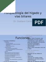 Fisiopatología Del Hígado