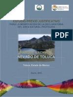 EPJ- Nevado de Toluca Enero 2013