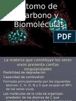 Carbono Quimica