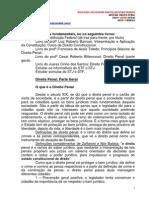 13.08.07 Semestral Defensoria Publica Paraiso Matutino Direito Penal Geral Mario Ditticio (1).pdf