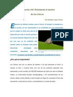 Artículo de divulgación Diaphorina citri.pdf