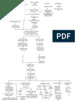 Pathway Nursing Guillain Bare Syndrome Patofisiologi GBS