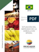 Proec Fpm2013 Cebolla Brasil