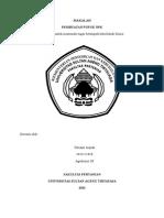 makalahpembuatanpupuknpk-130927014919-phpapp01