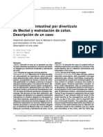 Caso Clinico Intestino