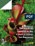 Rio Verde 9 2012- 13