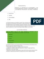 Factores Externos. Orientación V