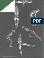 Gottfried Bammes Die Gestalt Des Menschen Anatomy Amp Visual Arts 1 3