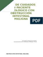 Plan de Cuidados en Paciente Oncológico Con Obstrucción Intestinal Maligna