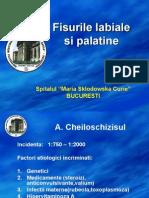 1 Cheiloschizis,Palatoschizis,Hemangioame,Limfangioame,Fistu
