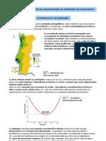 Vantagens e limitações da concentração ou dispersão do povoamento (11.º)