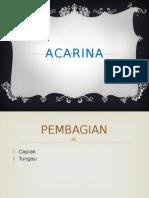 ACARINA.pptx