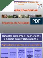Impactes Da Atividade Agricola