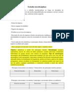 Roteiro Do Trabalho Interdisciplinar Plano de Negócios