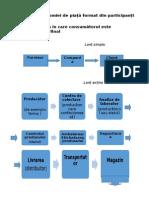 Lanț Al Economiei de Piață Format Din Participanți Raporturilor