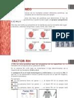 Eritroblastosis fecal
