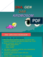 3 Dna, Gen Dan Kromosom