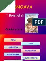 snoava_boierulsipacala