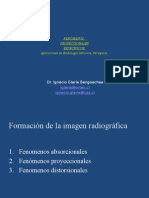 Fenómenos Proyeccionales Específicos. Radiología Intraoral Periapical