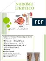 Exposicion de Sindrome Nefrotico