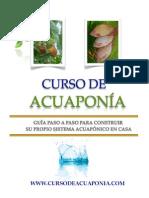 Curso de Acuaponia Casera