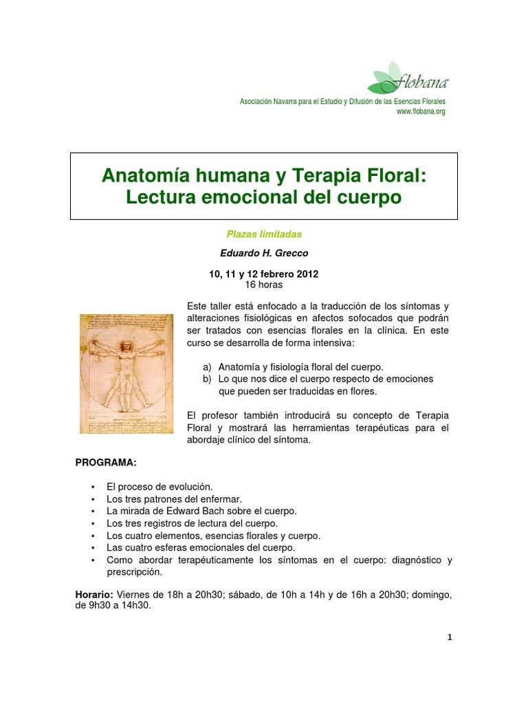 Perfecto Terapia Anatomía Www Org Ideas - Anatomía de Las ...