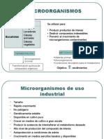 Microorganismos y sus aplicaciones