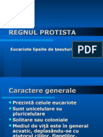 REGNULPROT.ppt