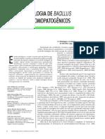 Ecologia de Bacillus Entomopatogênicos