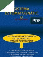 sistema estomatognatico elizabeth 1.ppt