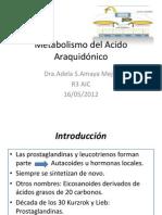 Acido araquidonico Inmuno.pdf