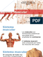 Anatomía General - Sistema Muscular ED FINAL.ppsx