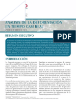 ANÁLISIS DE LA DEFORESTACIÓN EN TIEMPO CASI REAL | Policy Brief N°1