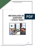 MANUAL AUDITOR OHSAS.doc - ManualAuditoriaOHSAS.pdf
