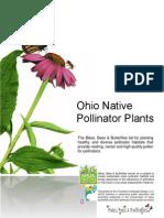 bbb plant list