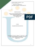 trabajo colaborativo lagebra unad 2015.pdf