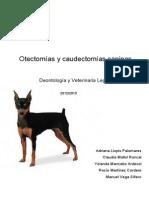 Otectomias y Caudectomias Caninas-Deontologia