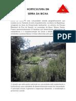 horticultura em serra da bicha