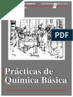Química Básica PRACTICAS