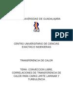 CONVECCION LIBRE, CORRELACIONES DE TRANSFERENCIA DE CALOR PARA CAPAS LIMITE LAMINAR Y TURBULENCIA