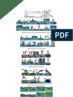 Cartel Diversificado de Conocimientos Con Plan de Fortalecimie