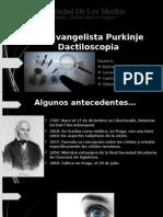 Jan Evangelista Purkinje DACTILOSCOPIA