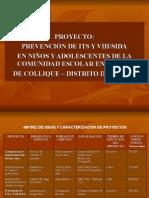 33889123 Proyecto Educativo Evaluacion PSICOLOGIA
