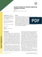Silva Et Al-2012-FEMS Yeast Research