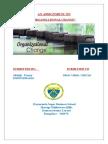 -Organisational-Change sony and kodak.docx