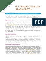 Digestión y Absorción de Los Carbohidratos