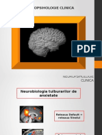 Neuropsihologie Clinica Curs 3